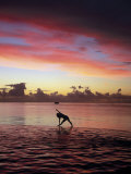 Woman Doing Yoga by Ocean at Sunset Photographic Print by Barry Winiker