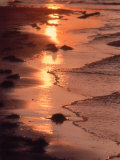 Sunset, Stanhope Beach, Pei, Canada Photographic Print by Pat Canova