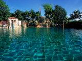 Venetian Pool, Coral Gables, Miami, FL Fotodruck von Robin Hill