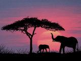 Silhouette von Elefanten und einem Baum Fotografie-Druck von David Davis