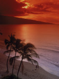 Aerial of Tropical Beach at Sunset, Maui, HI Photographic Print by Danny Daniels