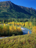 Mts and Trees in Autumn, Denali National Park, AK Photographic Print by Hal Gage