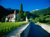 Vineyards and Chateau, Montreux, Switzerland Photographic Print by Peter Adams