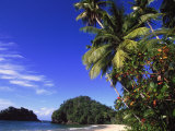 Paria Beach, Trinidad Photographic Print by Timothy O'Keefe