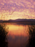 Sandpoint, Id, Sunset on Lake Pond Oreille Photographic Print by Mark Gibson