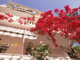 Red Flowers, Clothesline, Epirus, Greece Fotoprint van Walter Bibikow