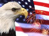 Águila, fuegos artificiales, patriotismo en EE.UU. Lámina fotográfica por Bill Bachmann