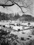 Snowing Evening Central Park, NYC Photographic Print by Walter Bibikow