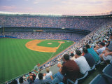 People at a Baseball Game Fotografie-Druck von Rudi Von Briel