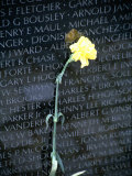 Vietnam War Memorial, Washington DC Photographic Print by Jennifer Broadus