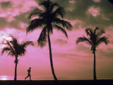 Silhouette of Runner on Beach, Ft. Lauderdale, FL Photographic Print by Maria Taglienti