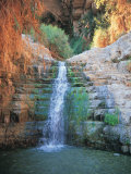 Shulamit Fall at En Gedi Reserve, Israel Photographic Print by Barry Winiker