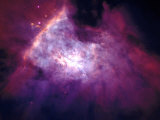 Orion Nebula Photographic Print by Arnie Rosner