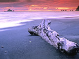 Rialto Beach Sunset with Driftwood Log Photographic Print by Russell Burden