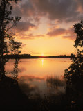 Sunset at Paurotis Pond, Everglades National Park, FL Photographic Print by David Davis