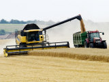 Yellow New Holland Combine Harvester Unloading Grain into Trailer, UK Photographic Print by Martin Page