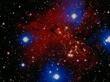 Stars and Nebula Photographic Print by Terry Why