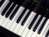 Piano Keyboard Photographic Print by John T. Wong