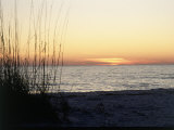 Sunset on Sanibel Island, Gulf Coast of FL Fotografie-Druck von David Davis