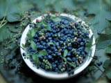 Bowl of Blueberries Photographic Print by ATU Studios 