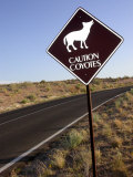 Coyote Crossing Street Sign on Desert Road Photographic Print by Yvette Cardozo