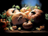 Pumpkins Photographic Print by  ATU Studios