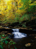 Waterfalls, Ricketts Glen State PArk, PA Photographic Print by Jim Schwabel