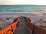 Boardwalk Leading to Shore Photographie par Pat Canova