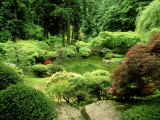 Pond Garden, Japanese Garden Portland USA Photographic Print by Adam Jones