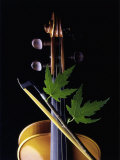Violin with Maple Twig Photographic Print by Howard Sokol