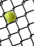 Tennis Ball in Fence Fotografisk tryk af Martin Paul