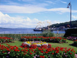 Garden at Esplanade, Argyll, Scotland Photographic Print by Mark Dyball