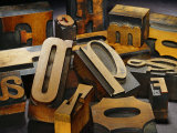 Wood Types Photographic Print by Martin Paul