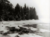 Frozen Lake and Evergreen Trees Photographic Print by Cheryl Clegg