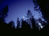 Moon with Trees, Sierra Nevada, USA Photographic Print by Olaf Broders