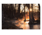 Sunrise on the River - Fog and Light 3 Photographic Print by Paul Huchton