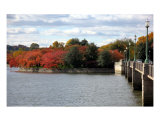Fall Foliage Around Tida Basin Washington Dc No-6 Photographic Print by William Luo