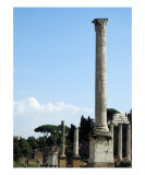 Foro Romano - Roman Forum - Rome Photographic Print by Alex Cybriwsky
