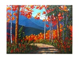 Path To Kaaterskill Falls Giclee Print by Patty Baker