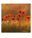 California Poppies 3 Giclee Print by Wendy Kroeker (Erhardt)