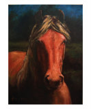 The Night Paddock Giclee Print by Tracie Thompson