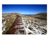 MO-10A Pathway Photographic Print by Luke Kneale