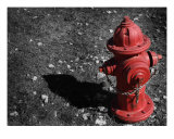 Fire Hydrant Photographic Print by Paul Huchton