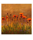 California Poppies 1 Photographic Print by Wendy Kroeker (Erhardt)