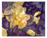 Moonlight Daffodils Watercolor Giclee Print by Lilly Fluger