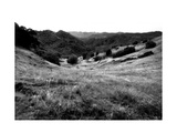 Valley Mono Photographic Print by John Gusky