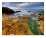 Plage Photographic Print by Patrick Morand