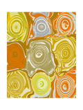 Orange Sherbert Giclee Print by Ricki Mountain