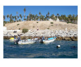 Boats In Cabo Photographic Print by Lynn C Johnston