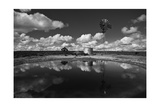 Ranch Pond, New Mexico Photographic Print by Steve Gadomski